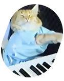 Некролог: Кот умер! Даздравствует кот!. Изображение № 3.