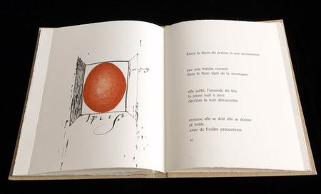 Blood OnPaper – Искусство Книги. Изображение № 12.