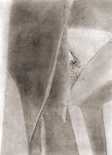 Tina Modotti. Изображение № 7.