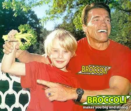 Брокколи-убийцы. Изображение № 2.