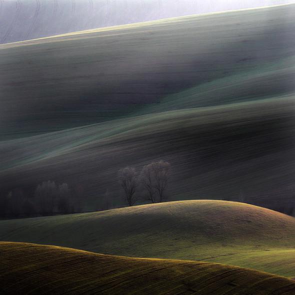 Marcin Sacha. Изображение № 12.