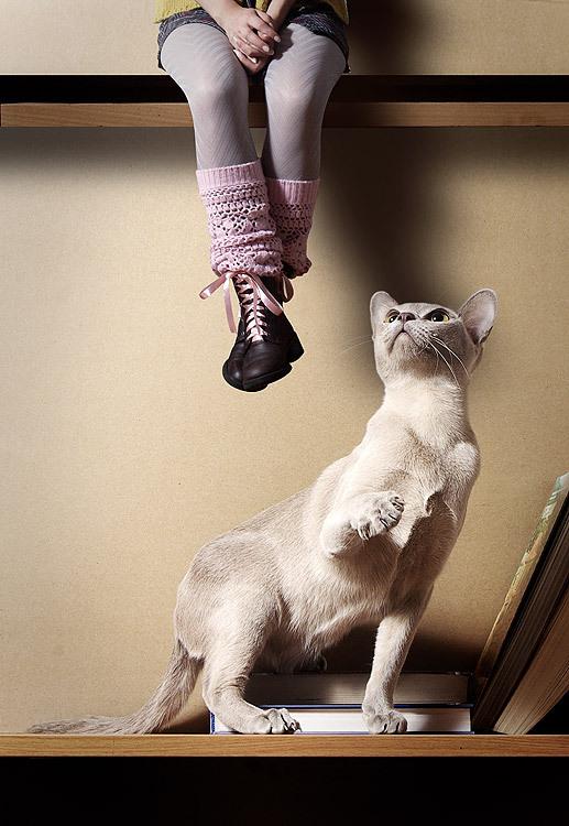 Фотографии Юлии Отто. Изображение № 7.