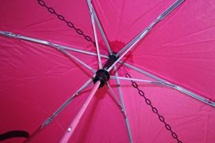 Обзор зонта Superslim-2 Bird&Cat. Изображение № 4.