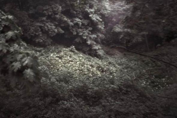 """""""Белые ночи"""" Питера Тена Хуупена. Изображение № 7."""