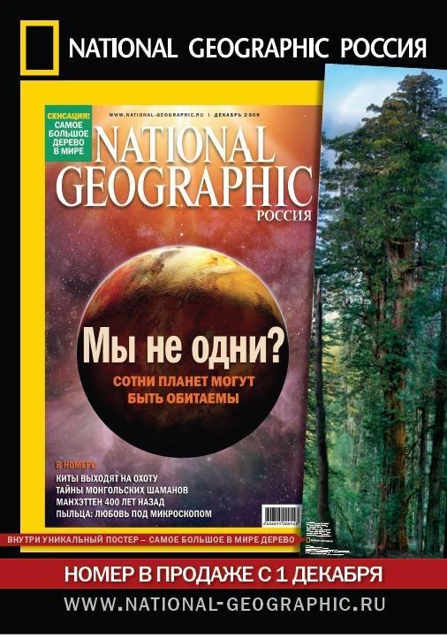 Секвойные истории: фотопроект National Geographic. Изображение № 6.