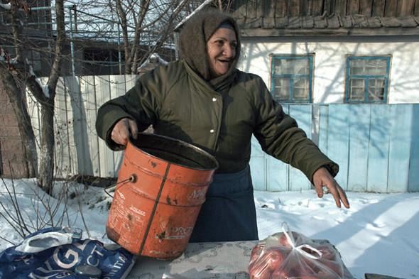 Алматинские яблочки – миф?. Изображение № 2.