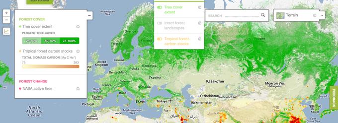 Появилась интерактивная карта мировых лесов. Изображение № 4.