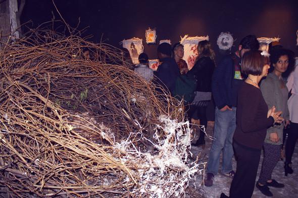 Изображение 3. David Foote Anne Koch Present The Nest.. Изображение № 3.