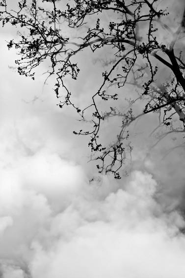 Черно-белые путешествия. Изображение № 37.
