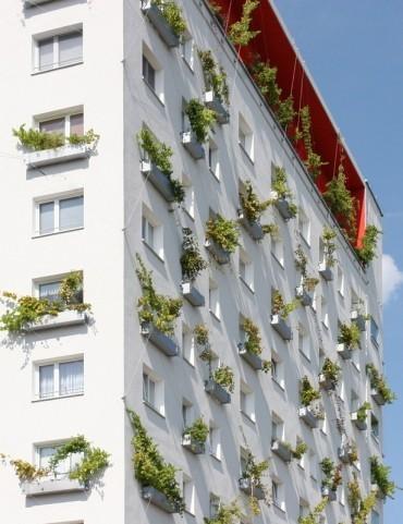 Архитектор: Muck Petzet. Изображение № 10.
