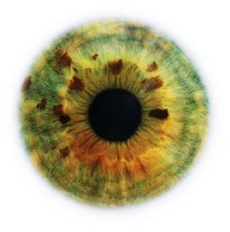 Фотограф Rankin — Eyescapes. Изображение № 10.