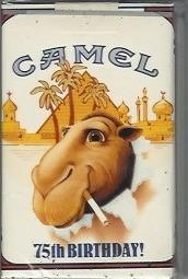 Уроки Camel. Изображение № 1.