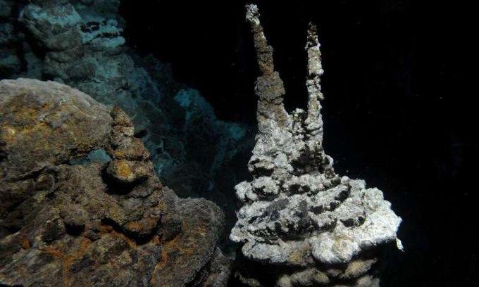 Обнаружен организм, помогающий понять появление эукариот. Изображение № 1.