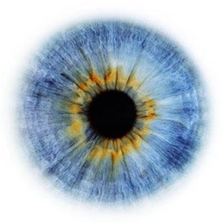 Фотограф Rankin — Eyescapes. Изображение № 19.