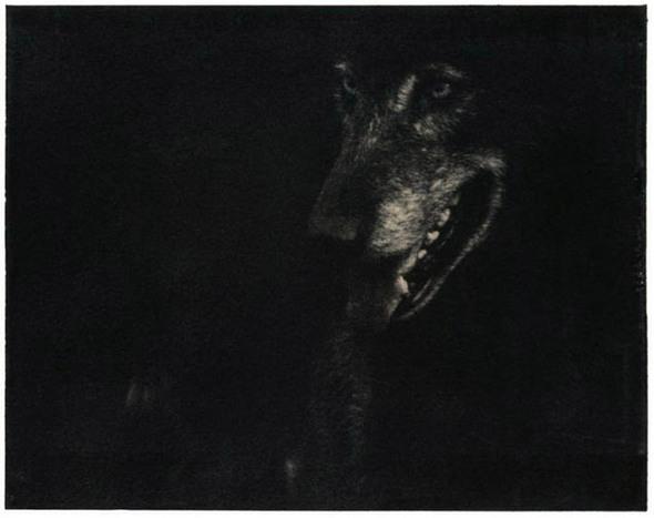 Mark Gouby. Изображение № 15.