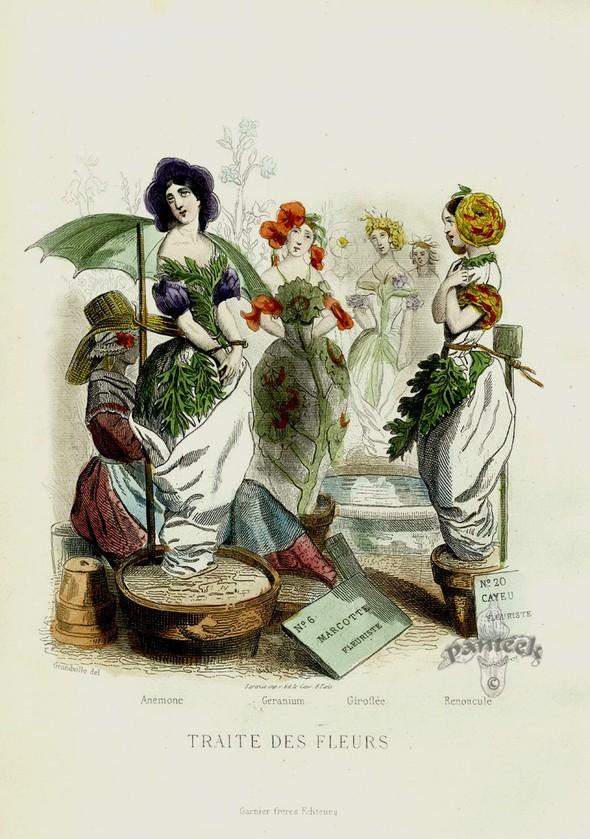 Винтажные иллюстрации J.J. Grandville. Изображение № 1.