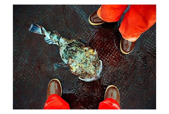 Фото-рыбалка Кори Арнольда. Изображение № 37.