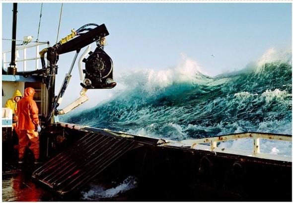 Corey Arnold. Морская фотография. Изображение № 16.