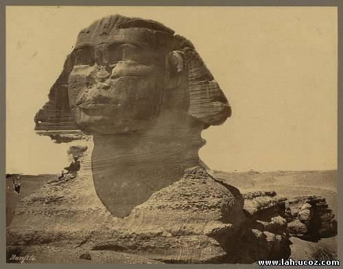 Фото левого уха Сфинкса... Очевидно, что с этой стороны ничего странного нет.... Изображение № 3.