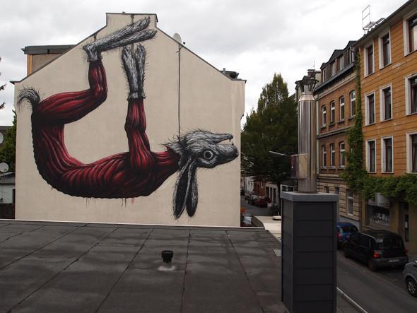 Животный стрит-арт от бельгийского граффитчика ROA. Изображение № 8.