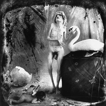 Гуси-лебеди. Изображение № 20.