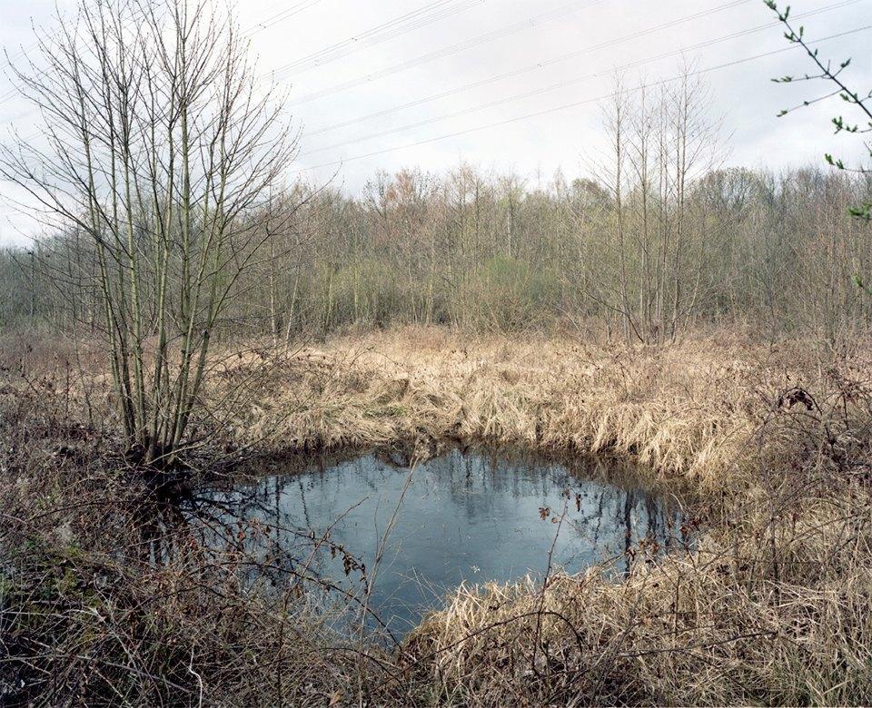 Галерея: как война изменила леса Германии. Изображение № 4.