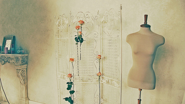 "Bakcstage бренда ""Rose&Petal"" AW-2012. Изображение № 7."