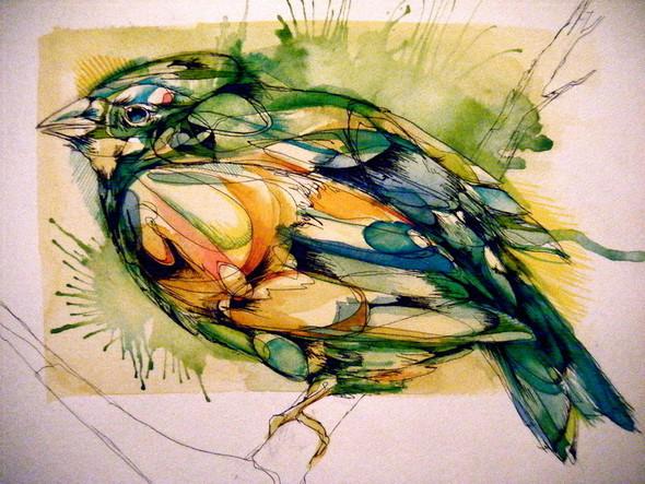 Птицы Abby Diamond. Изображение № 7.