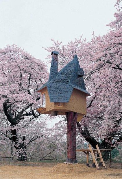 В Японии построили домик на дереве для любования сакурой. Изображение № 2.