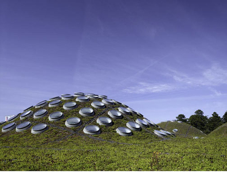 Академия подзелёным покрывалом. Изображение № 6.