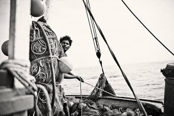 Shrimp boat MFR 646 DF GOA - Non stop. Изображение № 12.