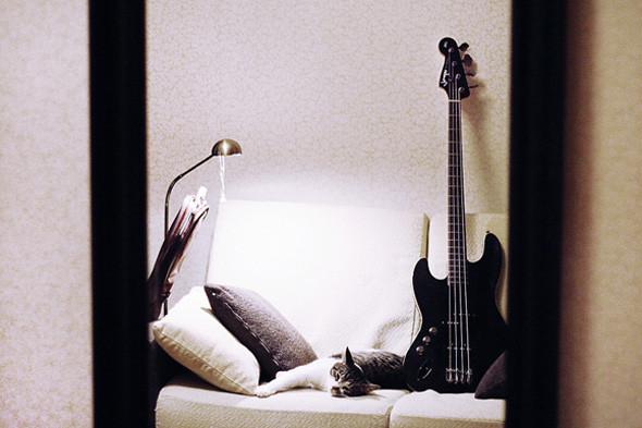 Бас-гитара Fender Jazz Bass. Изображение № 52.