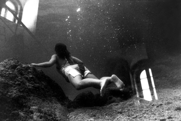 Подводная жизнь глазами фотографа Карлоса Франко. Изображение № 5.
