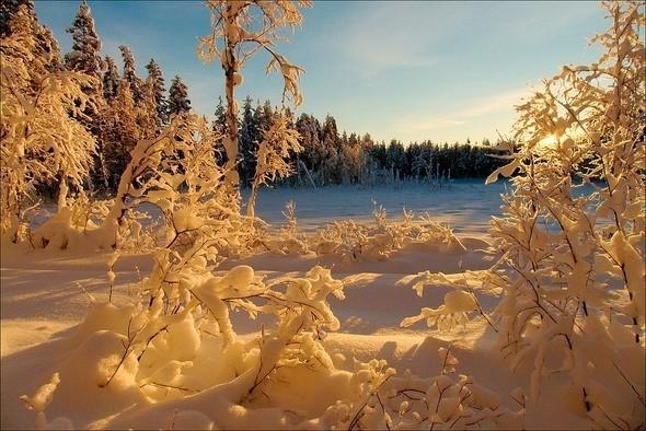 Изображение 22. Выходные в шведском лесу.. Изображение № 22.