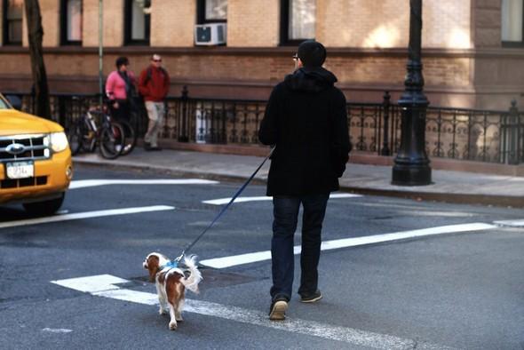 В поисках своего Нью-Йорка. Изображение № 14.