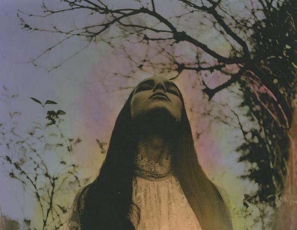 Witches vs. Fairies. Изображение № 49.