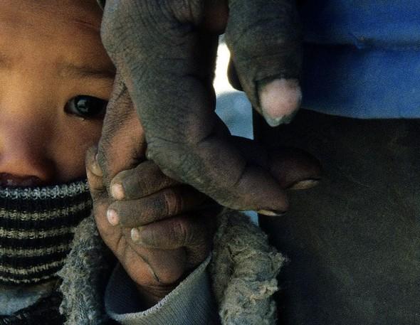 Фотоконкурс National Geographic 2010. Изображение № 13.