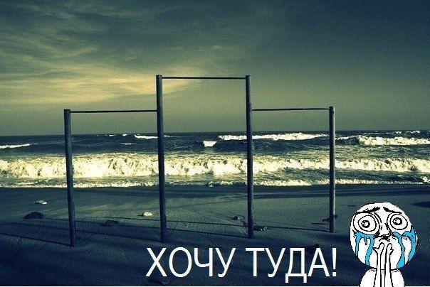 Мемы 2012. Изображение №38.