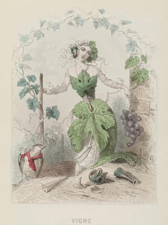 Винтажные иллюстрации J.J. Grandville. Изображение № 17.