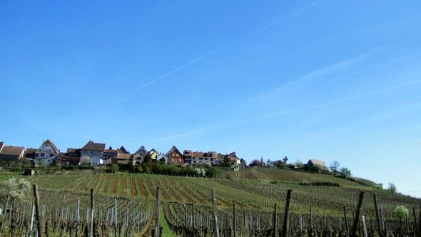 Франция: Европейская идиллия, французские мотивы и немецкий дух Эльзаса. Изображение № 46.