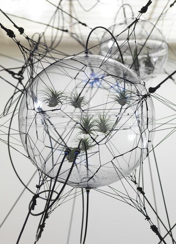 Мечты о другой жизни: Архитектура на грани реальности. Изображение № 2.