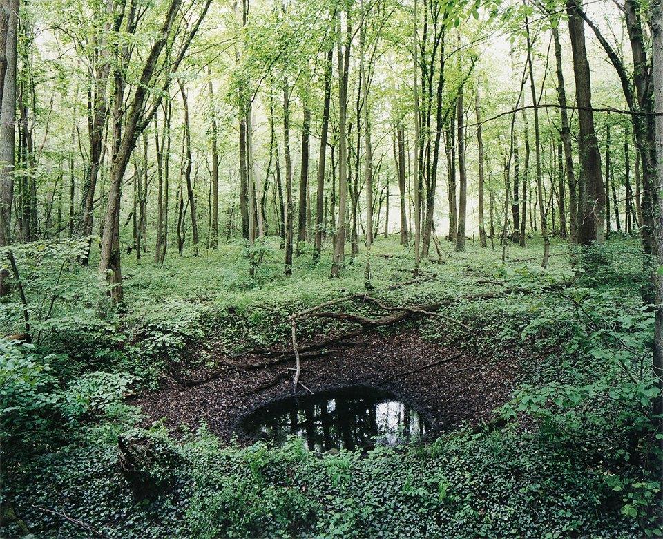 Галерея: как война изменила леса Германии. Изображение № 11.