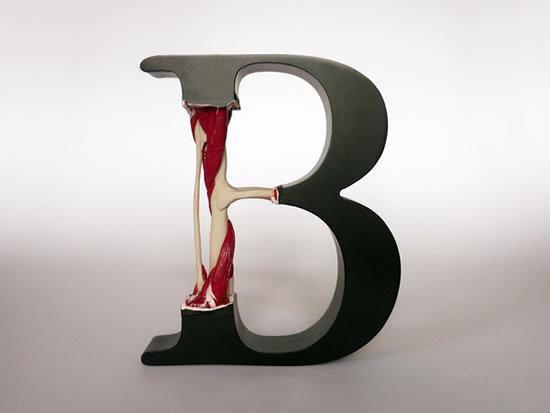 Изображение 7. Анатомия Букв.. Изображение № 7.