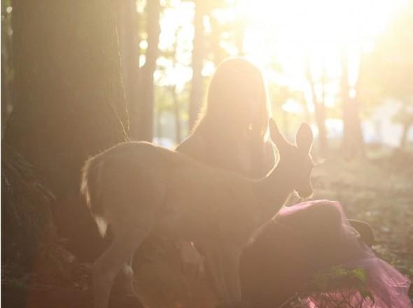 ЭМИЛИ ЛИ : девушка и олень. Изображение № 1.