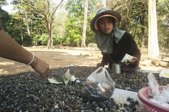 Изображение 25. Vietnam/Cambodga.. Изображение № 25.