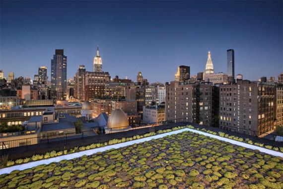 Изображение 10. Крыши Нью-Йорка.. Изображение № 10.