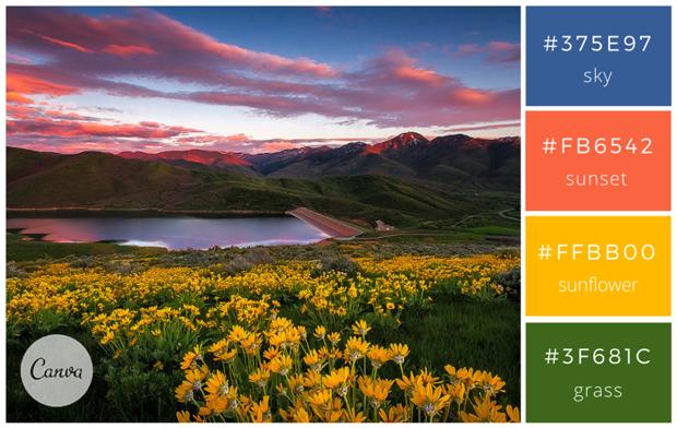 Сервис Canva предложил 100 удачных сочетаний цветов. Изображение № 8.