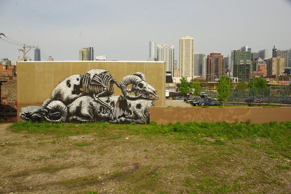 Животный стрит-арт от бельгийского граффитчика ROA. Изображение № 11.