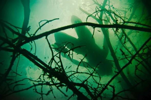 Подводная съемка OmniPhantasmic. Изображение № 18.