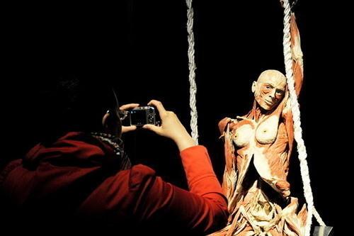 Скандальная выставка анатома Гюнтера ФонХагенса. Изображение № 4.